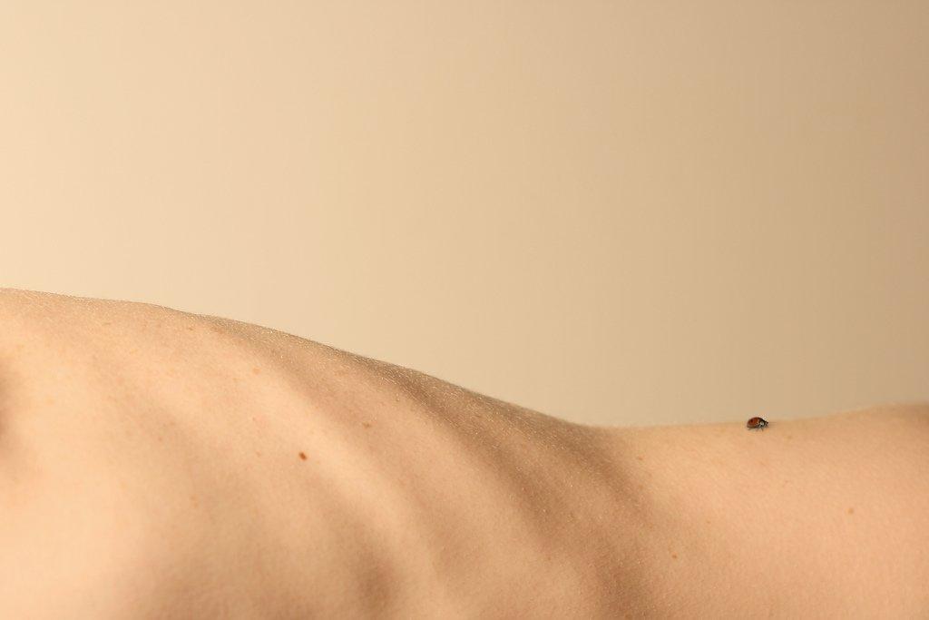 Flexibilidad para tu cuerpo y tu vida - Terapia Gestalt